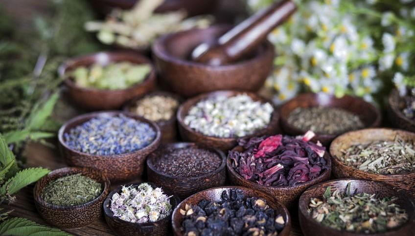 familias olfativas-equivalenza blog