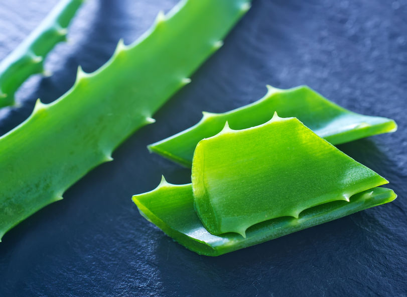 5 Propriedades cosméticas do Aloe Vera