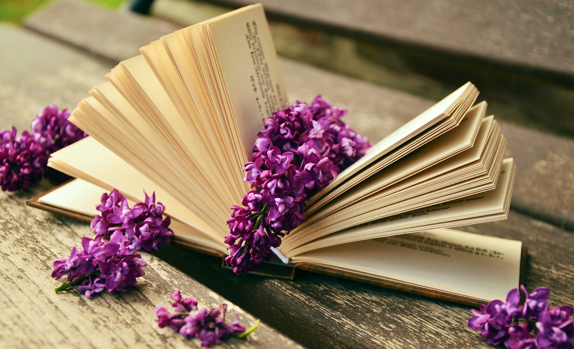 Perfumes literarios