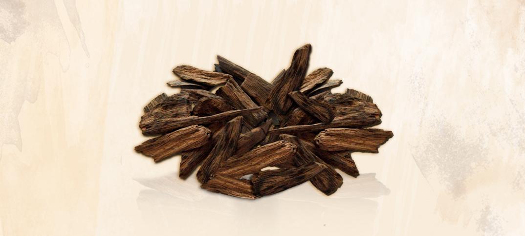 Oud: o ouro negro da perfumaria