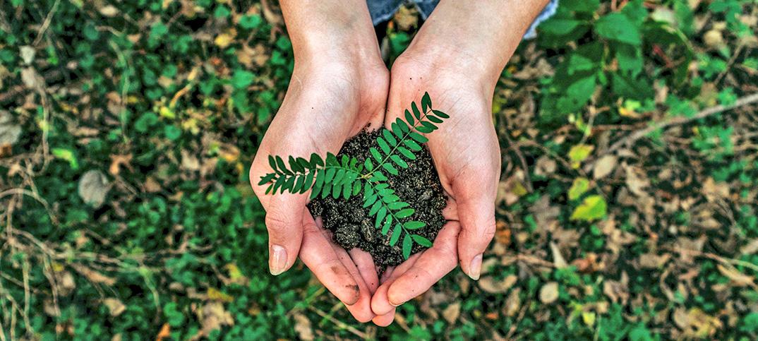 5 sencillos gestos para cuidar el medioambiente
